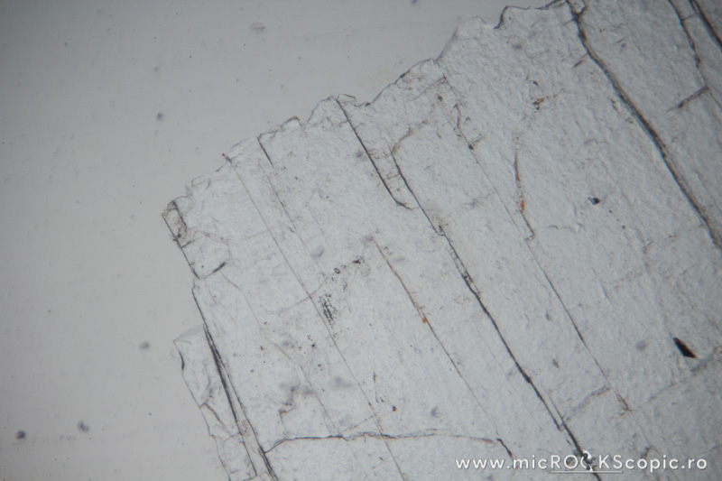 Apatite thin section - Non-silicates - MicROCKScopic